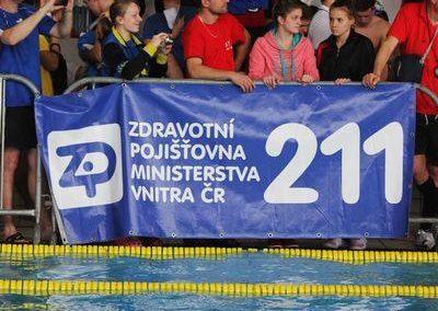 Plavani_2013_Grand_prix_2013__Brno_p18acd407l5fvjn18hudegg8dn